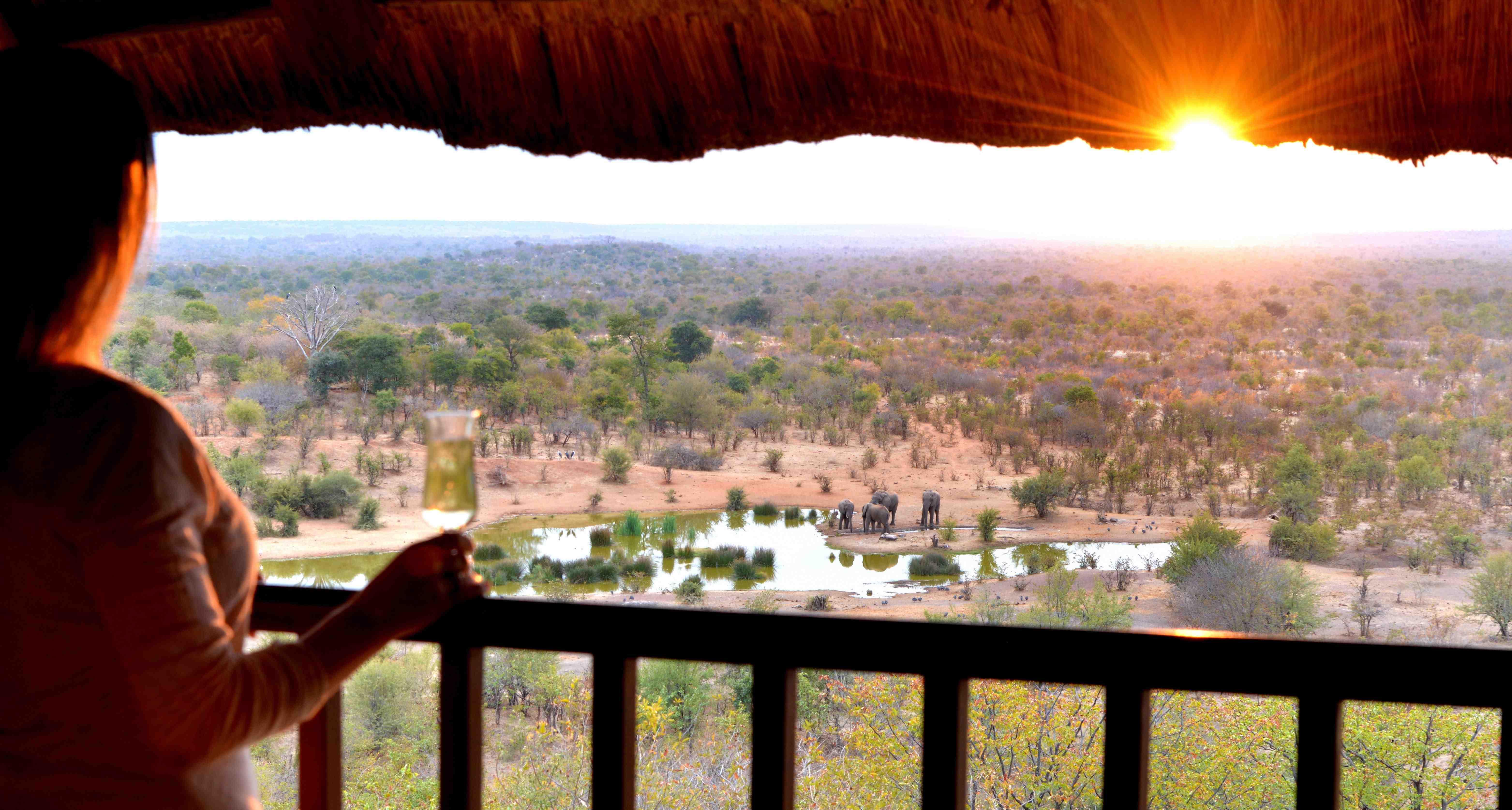 Safari Lodge Room Rates