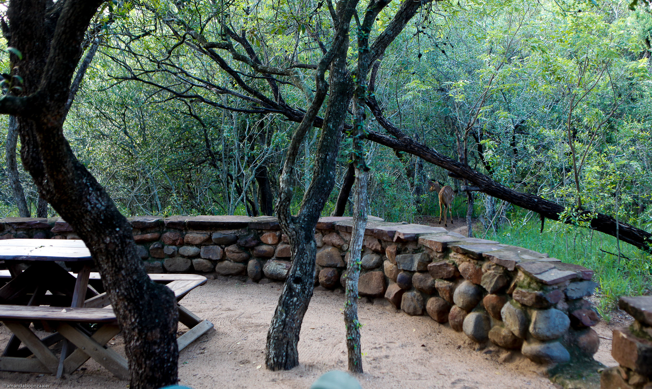 Mkhaya game reserve stone camp for Camp stone